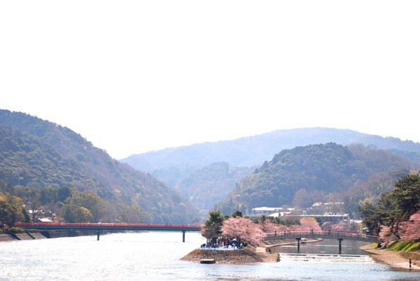 宇治川さくらまつり2012年