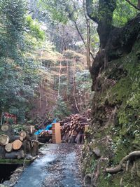滝宮神社 お滝1
