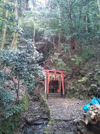 滝宮神社 お滝2