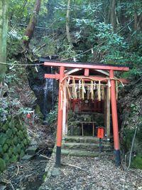 滝宮神社 お滝3