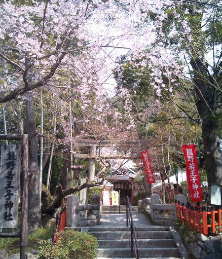 熊野若王子神社 第一鳥居