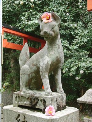 大豊神社 狛狐