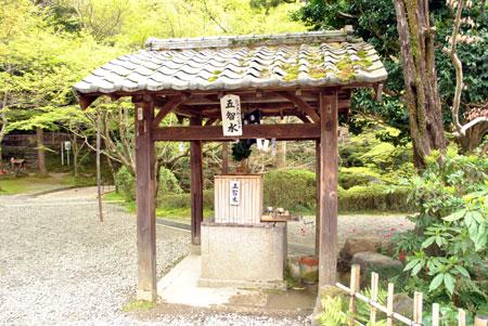今熊野観音寺 五智の井