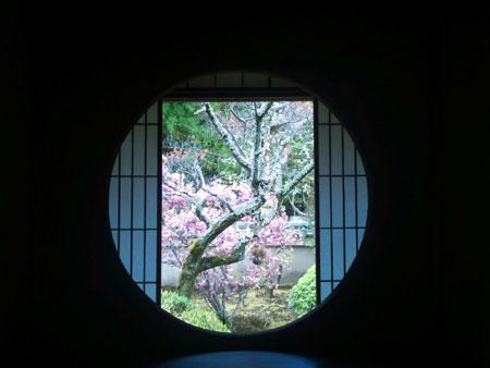 雲龍院 迷いの窓