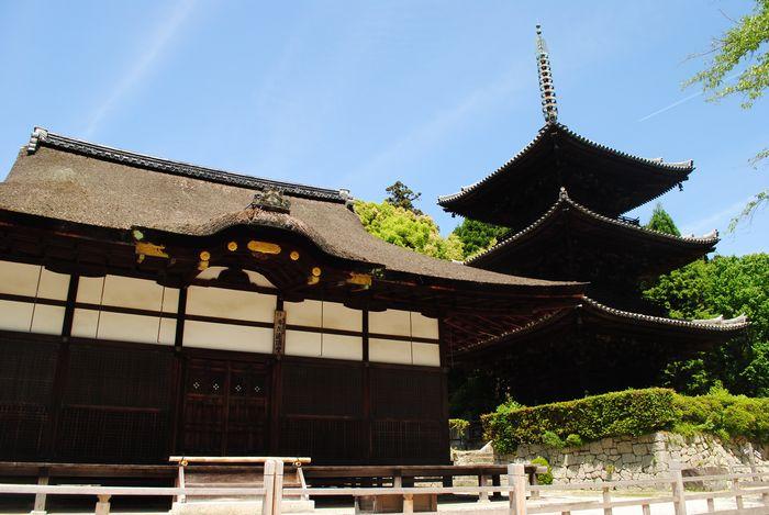 三井寺 唐院