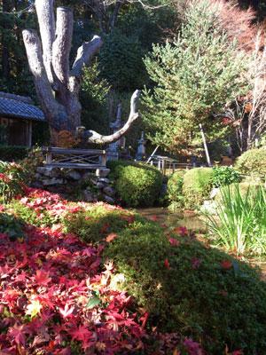 寂光院 庭園