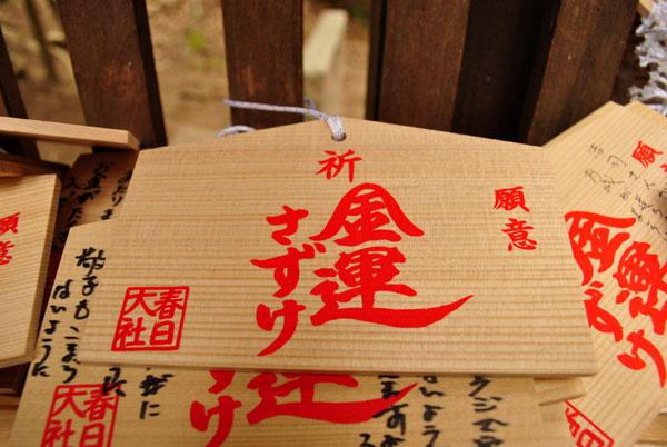 金龍神社 絵馬