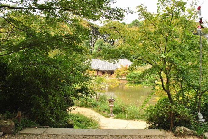 浄瑠璃寺 池