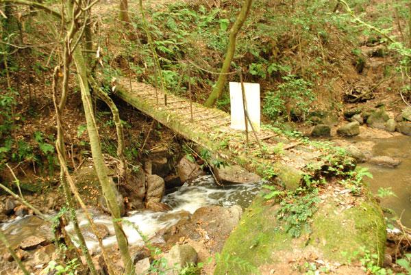 当尾 奥の院 橋