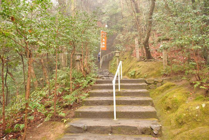 立木山 石段