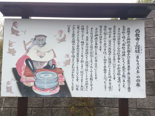西教寺 護猿