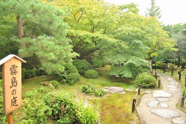青蓮院 霧島の庭