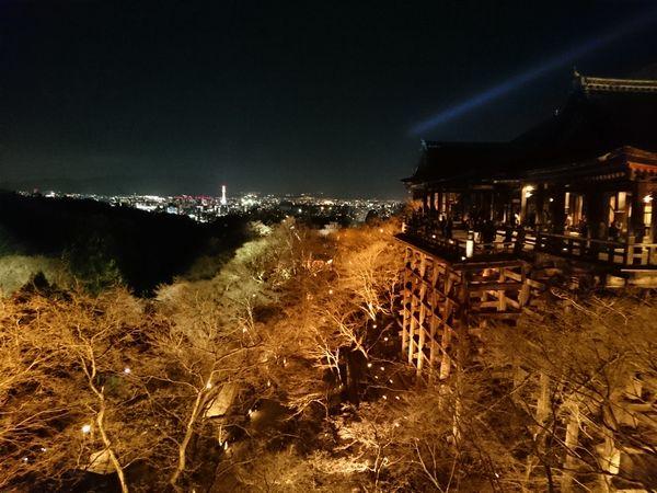 清水寺 夜景 ライトアップ