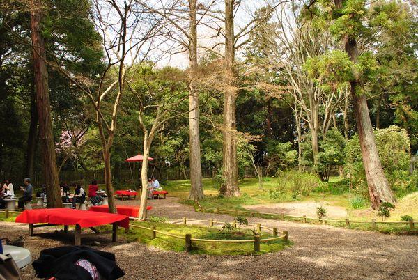 春日荷茶屋 庭園