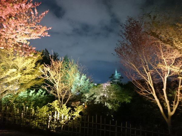 高台寺 祇園閣