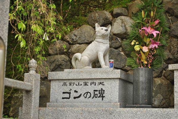 高野山の案内犬 ゴン