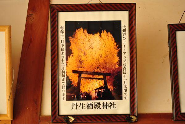 丹生酒殿神社 ライトアップ
