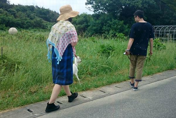 浜比嘉島 ヤギの散歩