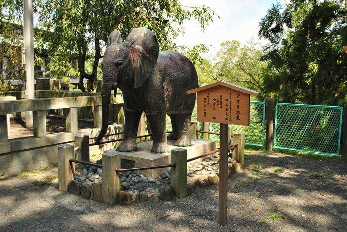 こんぴらさん アフリカ象