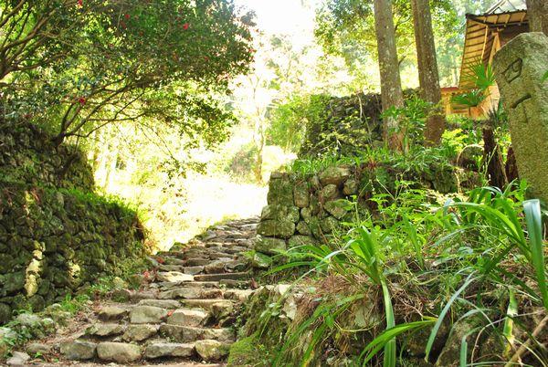 施福寺 石段