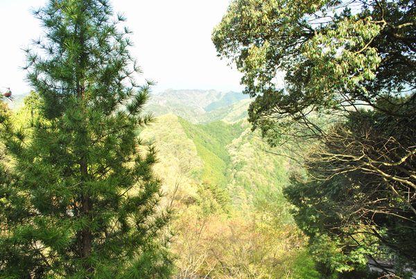 施福寺 景色