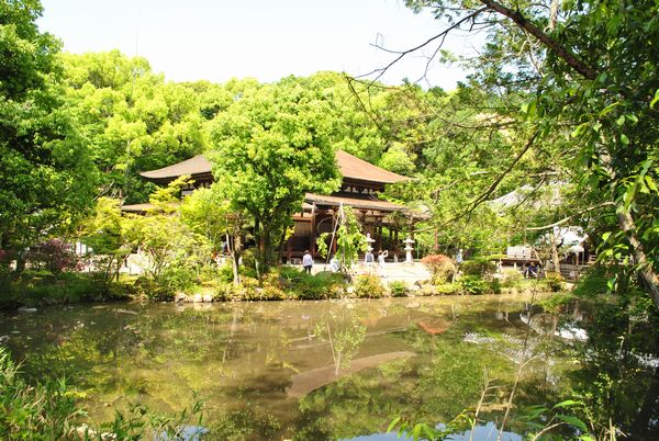 法界寺 池