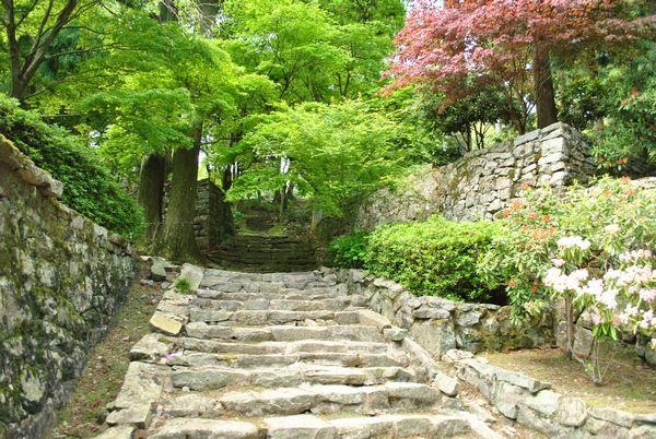 播州清水寺 石段