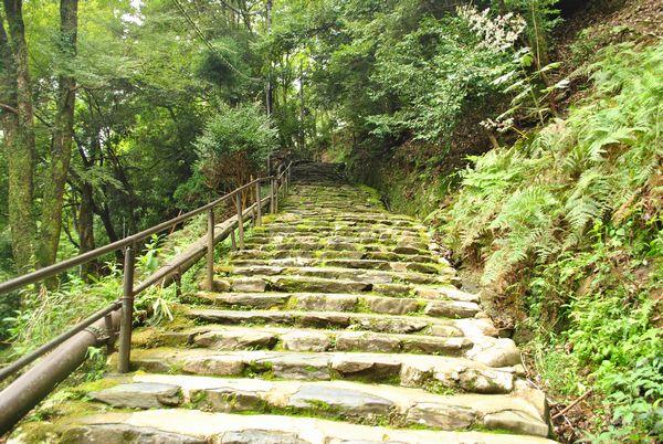 神護寺 階段