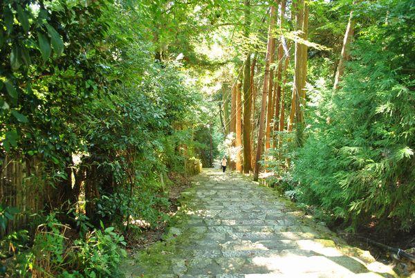 長命寺 階段
