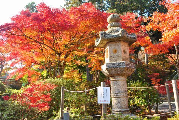 常楽寺 石灯籠