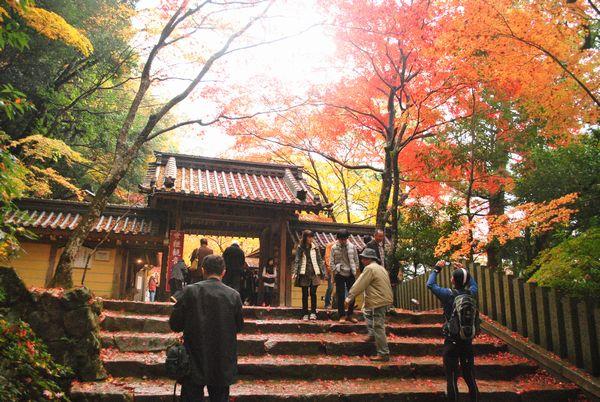 永源寺 総門
