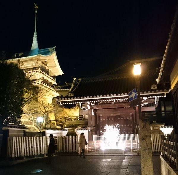 祇園閣 ライトアップ
