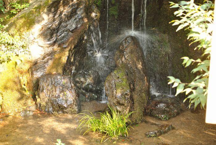 金閣寺 竜門瀑 鯉魚石