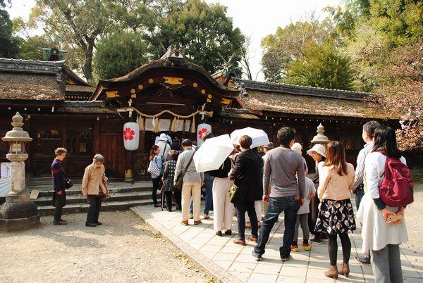 平野神社 本殿参拝