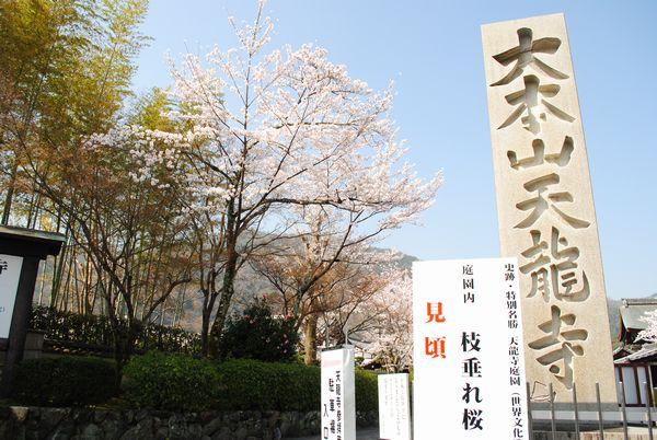 天龍寺 石碑