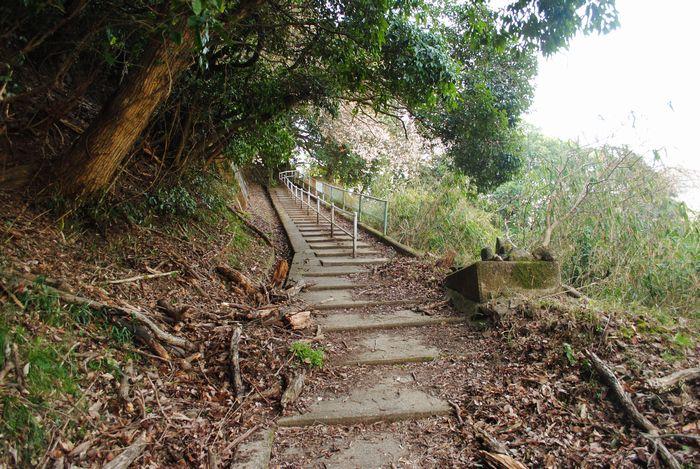 笠置山 東海自然歩道