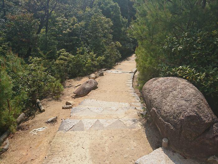弥山 登山道