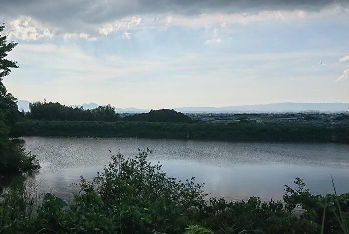 井寺池 景色