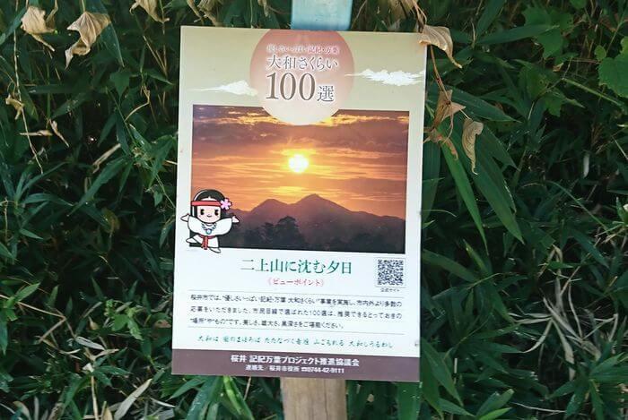 檜原神社 夕日