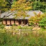 【浄瑠璃寺】極楽浄土に行きたい人なら一度は参拝しておきたいお寺