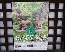 三井寺 あお若葉の競演
